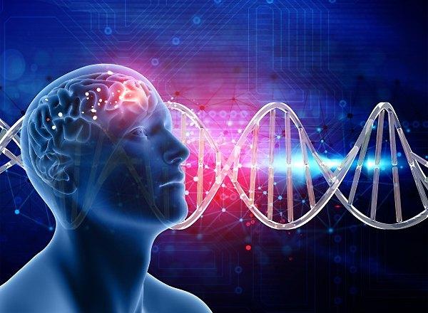 """Онлайн курс: """"Фитнес для мозга"""""""